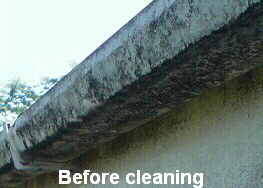 Fascia and gutters before being cleaned